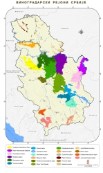 Vinogradarski rejoni Srbije