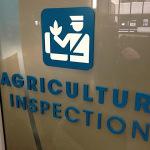inspekcija