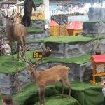 Sajam lova i ribolova Budimpseta (1)